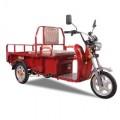 DISTRIBUTOR RESMI MOTOR LISTRIK Jual Dynabike Camel T3 pedicab rickshaw BARU Termurah