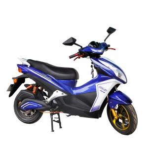 merak-biru-2000x2000-300x300.jpg