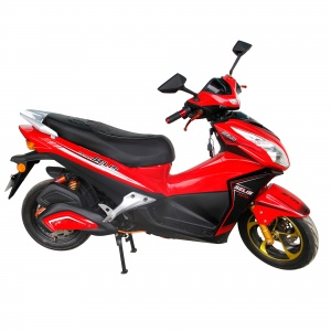 merak-merah-2000x2000-300x300.jpg